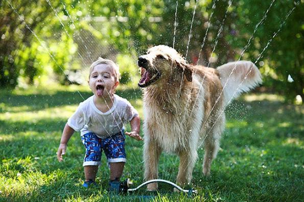 (5) Дали знаете зошто вашето куче е посреќно од вас?