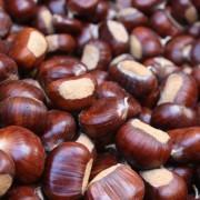 5 здравствени придобивки од костените