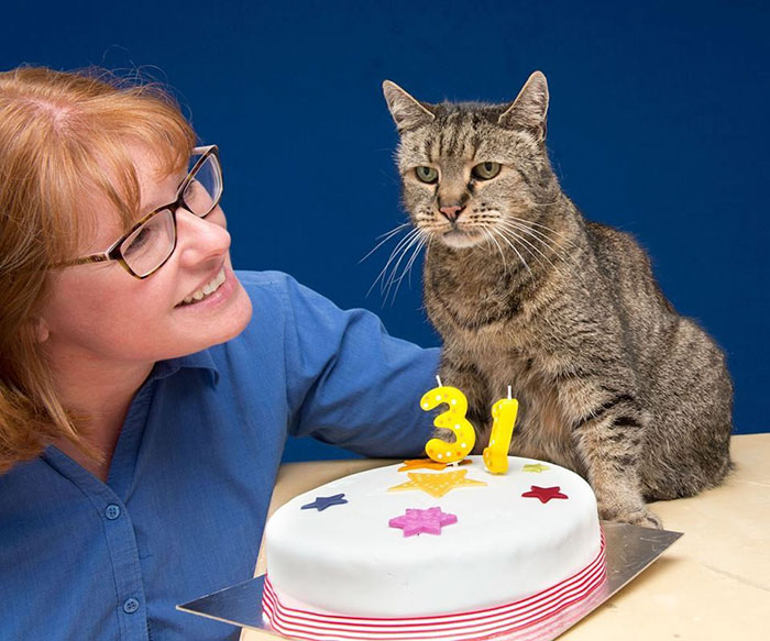 Најстариот мачор во светот го прослави својот 31-ви роденден