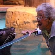 Норма прави смешни фаци со фоката, аквариум во Грузија