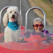 Лудо возење со крзнено пријателче
