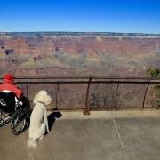 Големиот Кањон, Аризона