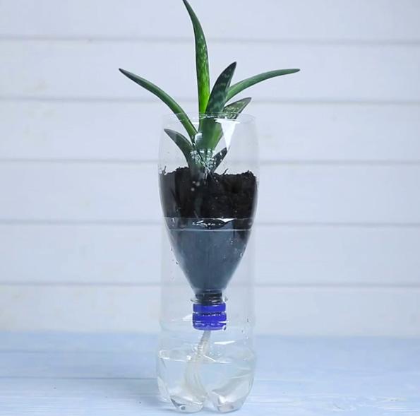 (5) Наместо да ги фрлате старите пластични шишиња, направете корисни предмети од нив