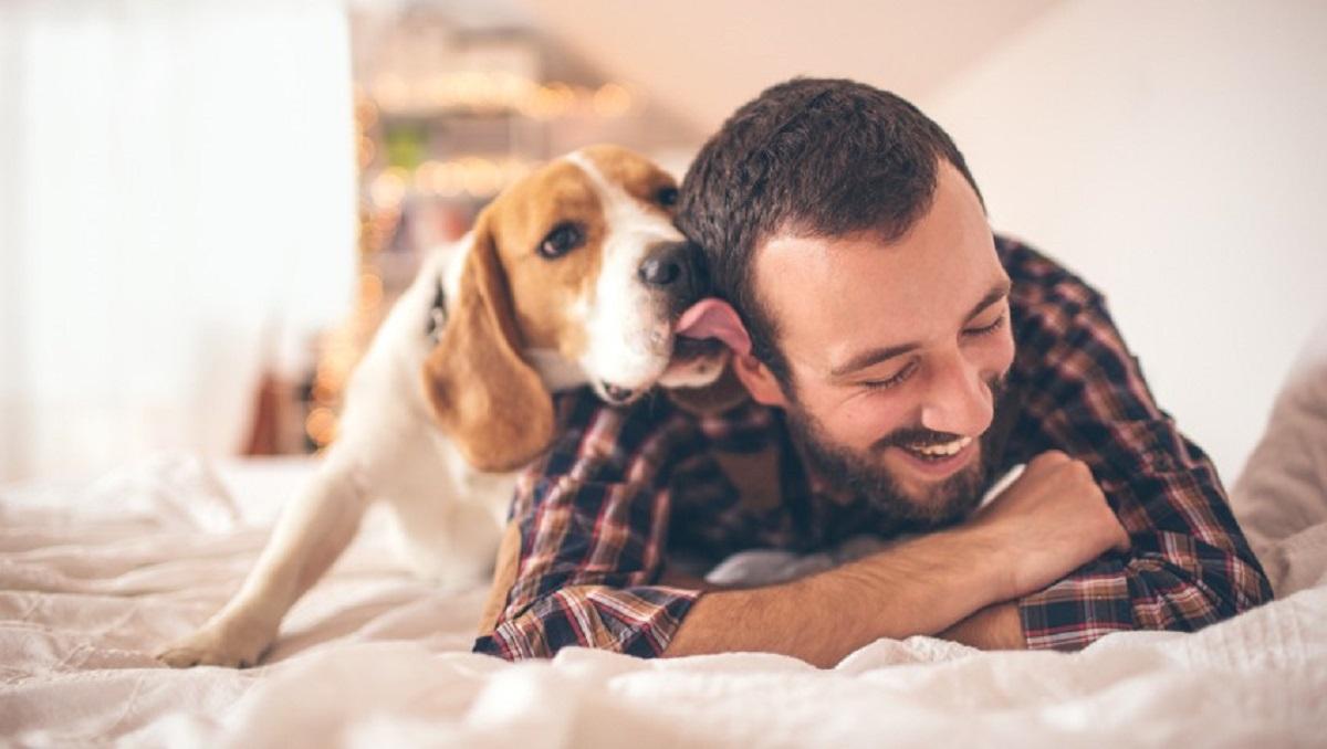 14 луѓе откриваат зошто не би можеле да си го замислат животот без куче