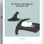 Зошто вештерките се дружат само со црни мачки