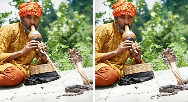 (5) Само гении можат да ги најдат разликите во овие фотографии