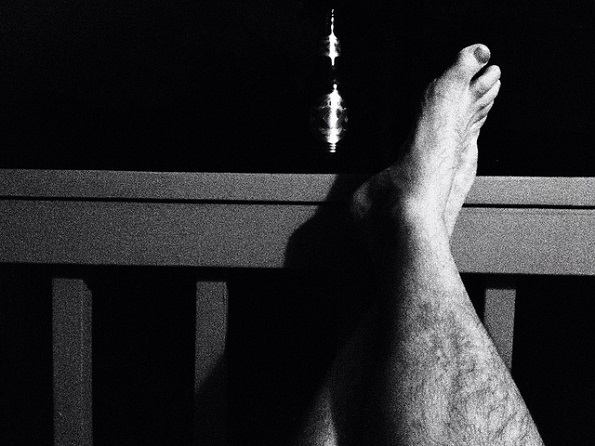15 фотографии кои го покажуваат животот на домашарите