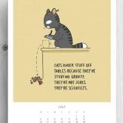 Мачките туркаат предмети од масата бидејќи ја проучуваат гравитацијата. Тие не се идиоти. Тие се научници.