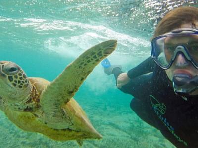 Најуспешните селфиња со животни што некогаш сте ги виделе!