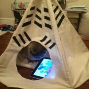 И мачките можат да си изградат тврдина и да користат Ајпед, зошто да не?!