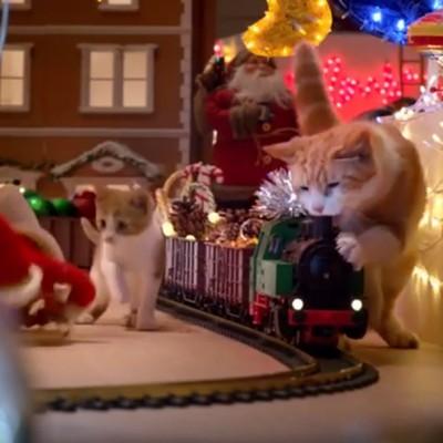 Реклама што го исполни сонот на сите мачки: Погледнете како тие уништуваат новогодишни украси