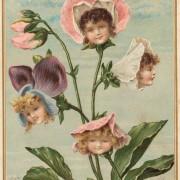 Децата се вистински цвеќиња за мирисање