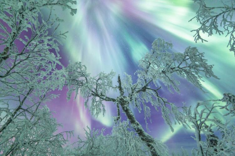 ZIMA - Page 7 2-magichni-zimski-fotografii-od-finska-pod-severnata-svetlina