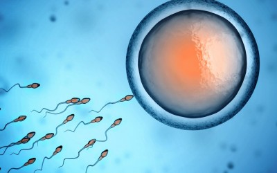 Најново откритие: Контрацепција за мажи која штити од бременост и трае 8 недели