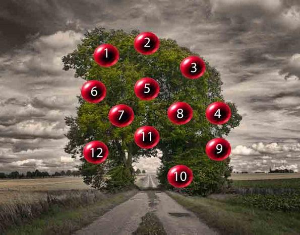 Изберете еден плод и дознајте дали ќе ви се оствари желбата