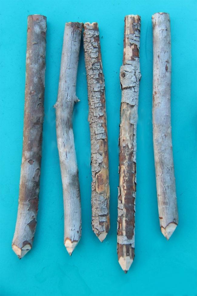 Направете сами: Молив од гранка дрво