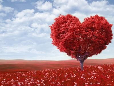 Од сосема поинаков аспект: Дали љубовта е емоција?