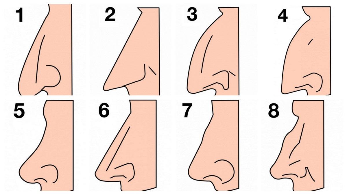 Обликот на вашиот нос зборува многу нешта за вашиот карактер!