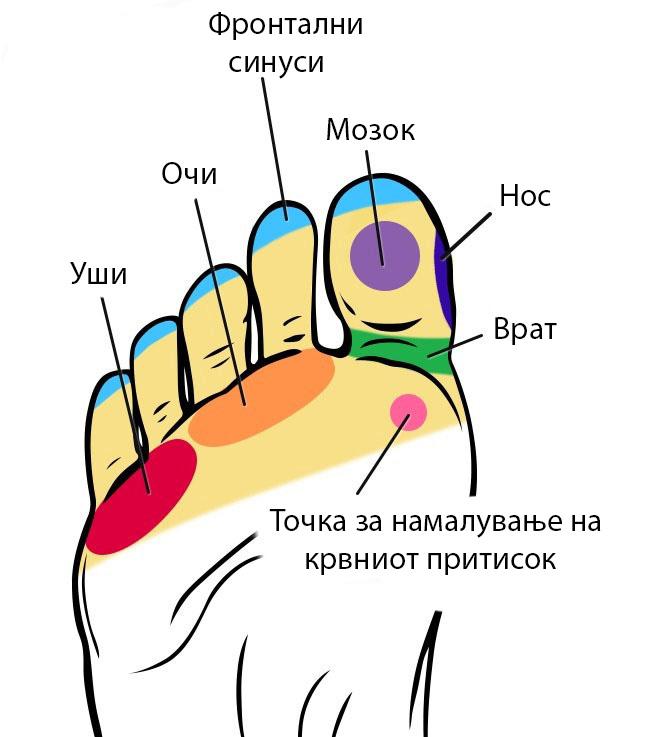 (2)tochki-na-vashite-stapala-koi-mozhete-da-gi-masirate-i-da-go-podobrite-vasheto-zdravje-kafepauza.mk