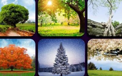 Одберете слика и дознајте повеќе за периодот што ви претстои