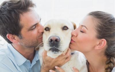 Зошто треба да започнете љубовна врска со девојка која обожава кучиња?