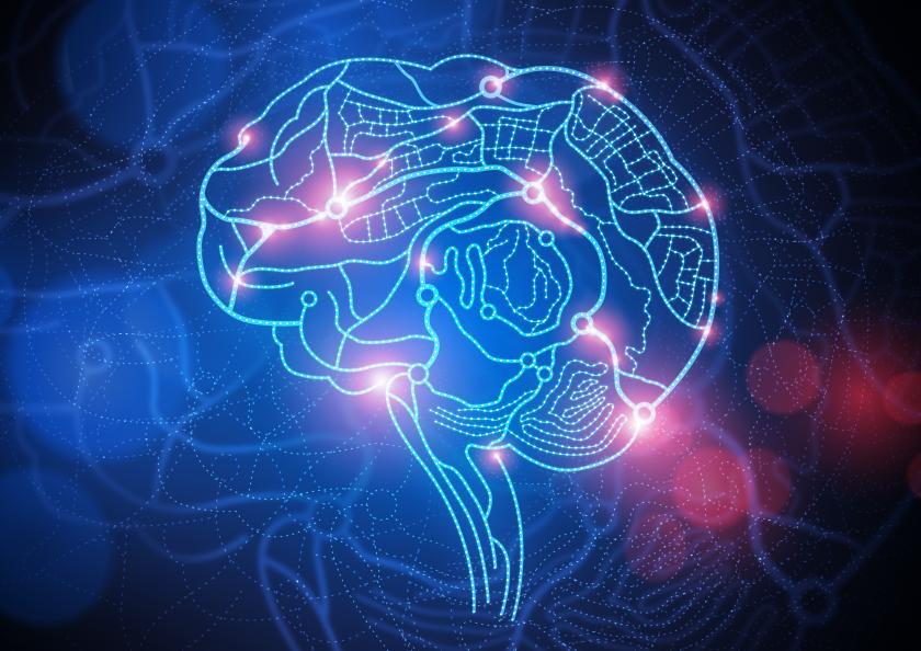 Човечкиот мозок не е дизајниран да ги памти работите
