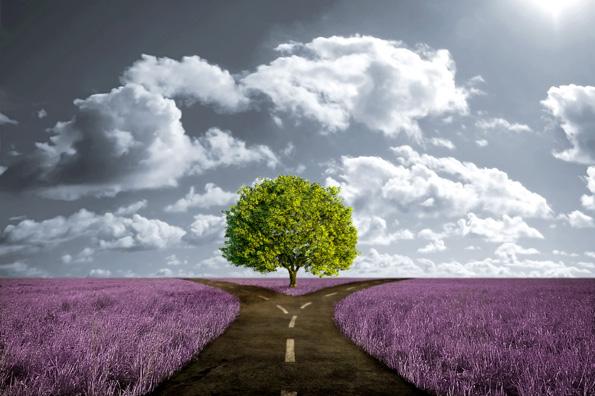 Инспиративни цитати што ќе ви дадат мотивација да соберете сила и да почнете отпочеток