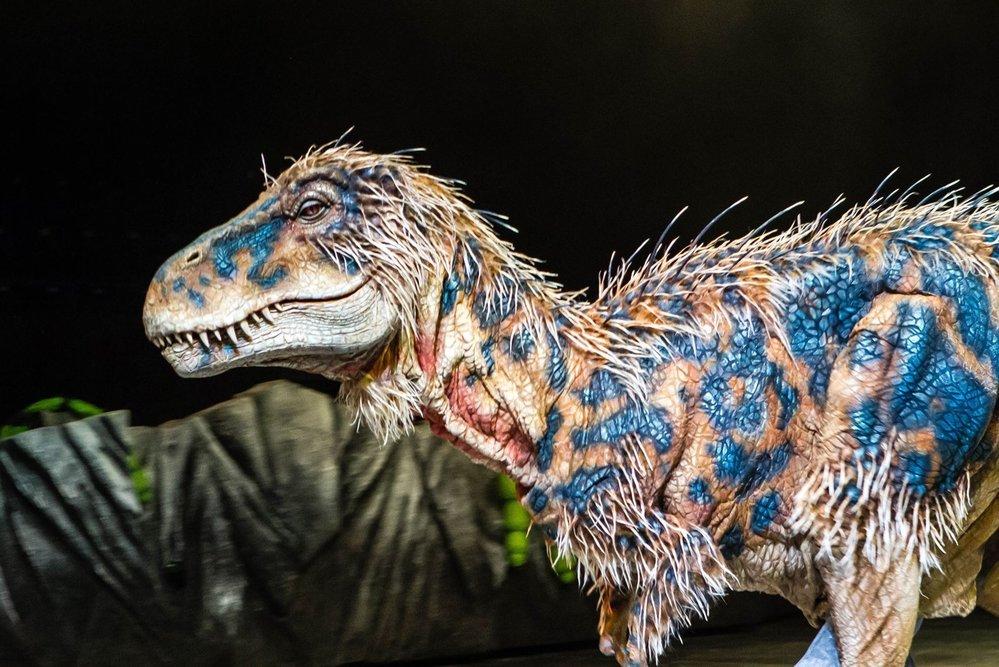(2)13-mitovi-za-dinosaurusite-koi-ne-se-tochni-kafepauza.mk