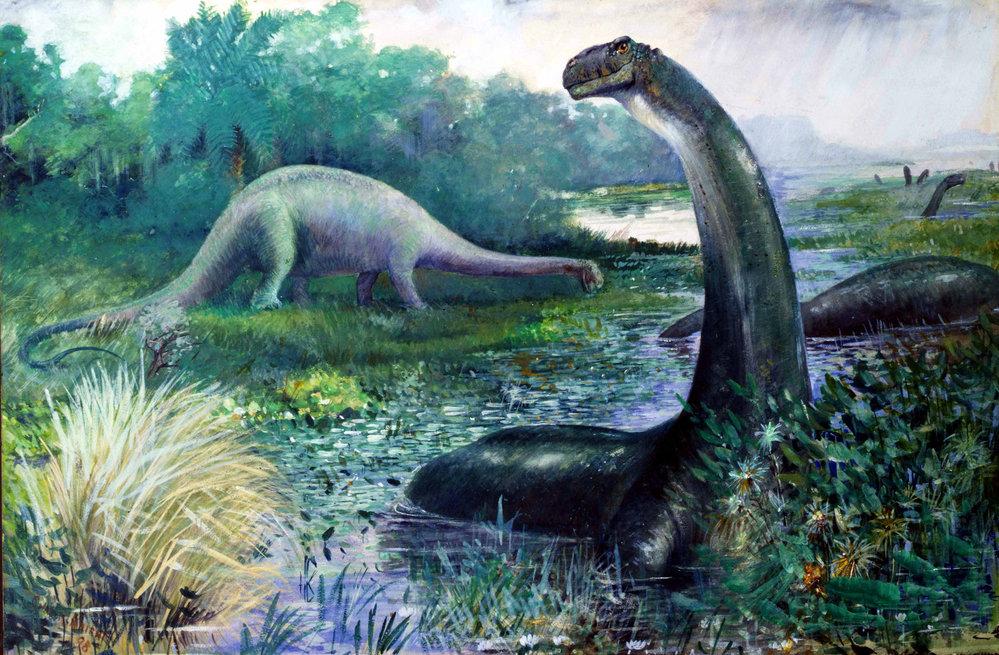 (4)13-mitovi-za-dinosaurusite-koi-ne-se-tochni-kafepauza.mk