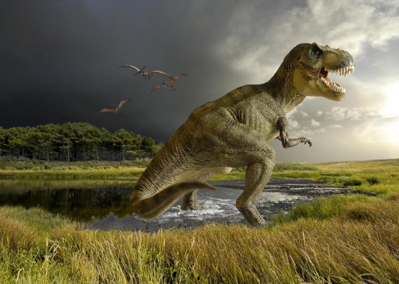 (5)13-mitovi-za-dinosaurusite-koi-ne-se-tochni-kafepauza.mk