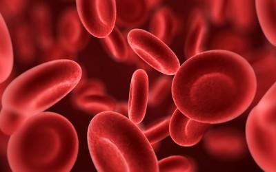 Зошто треба да си ја знаете својата крвна група?
