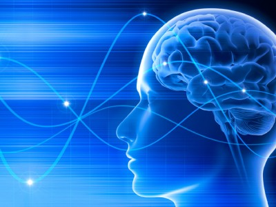 Луѓето знаат дека се мртви бидејќи мозокот продолжува да функционира по смртта