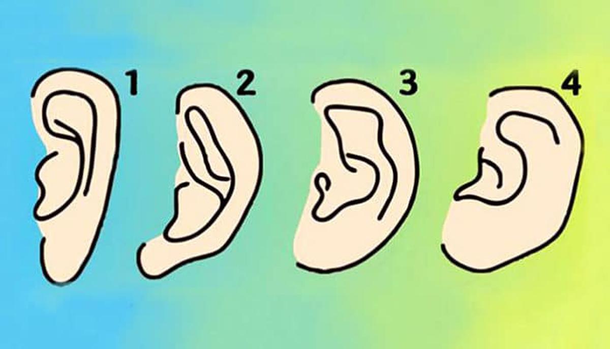 Пронајдете го обликот на вашите уши и дознајте нешто повеќе за себе