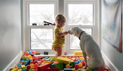 Најслаткото дуо на светот: Куче коешто порано било измачувано се плаши од сите освен од ова бебе