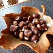 3-kostenite-lekuvaat-duri-13-bolesti-plod-koj-go-chuva-srceto-i-bubrezite-poln-so-magnezium-i-vitamin-www.kafepauza.mk_