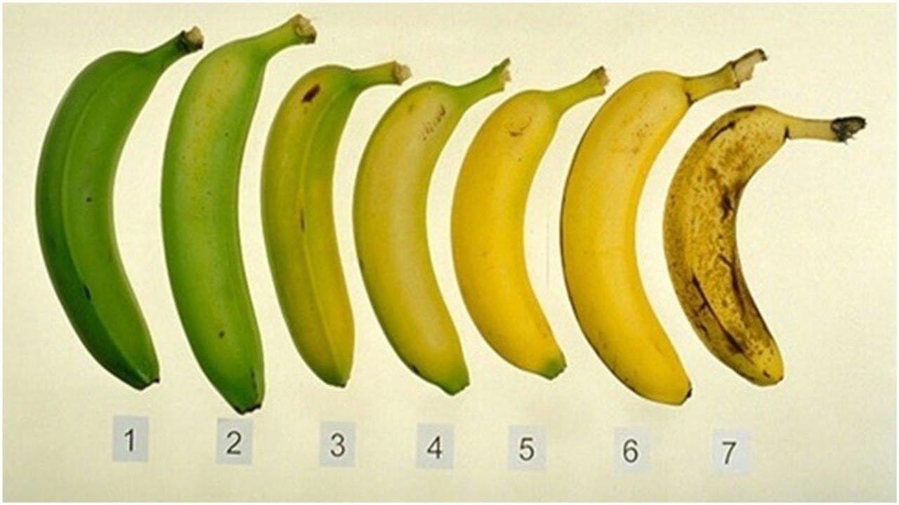 1-that-of-these-banani-bi-ja-izele-vasheto-health-depends-of-answer-www.kafepauza.mk_