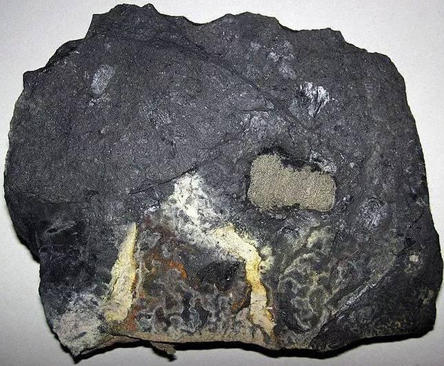 (5)najstarata-hrana-otkriena-od-arheolozite-kafepauza.mk