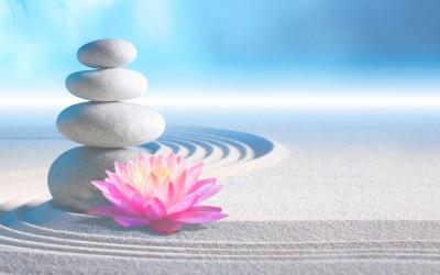 12 зен мудрости: Многу луѓе живеат, а не се свесни за животната магија