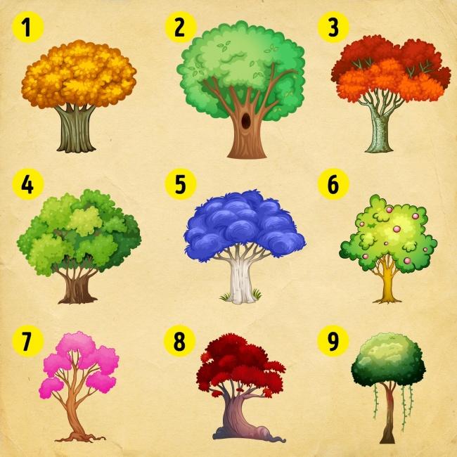 1-select-tree-and-find-what-where-dozhiveete-in-2018-ta-years-www.kafepauza.mk_ - Copy