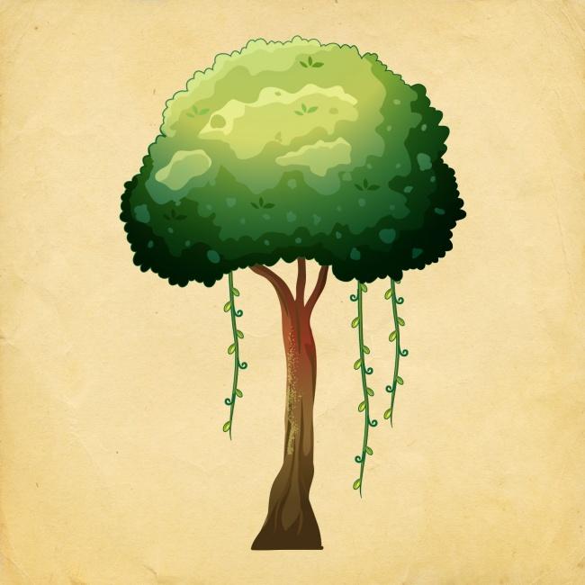 10-choose-tree-and-find-what-where-dozhiveete-in-2018-ta-years-www.kafepauza.mk_