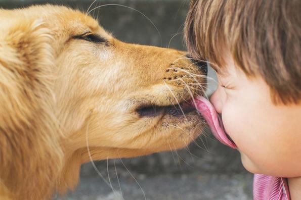 5 одвратни факти што треба да ги знаете пред да го бакнете вашето куче