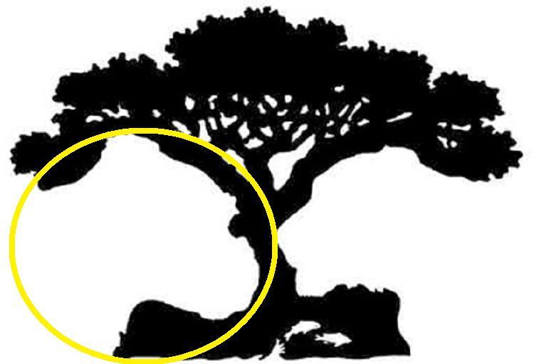 4-first-figure-what-what-where-i-voochite-on-picture-go-reveals-vasheto-vistinsko-vnatreshno-jas-www.kafepauza.mk_