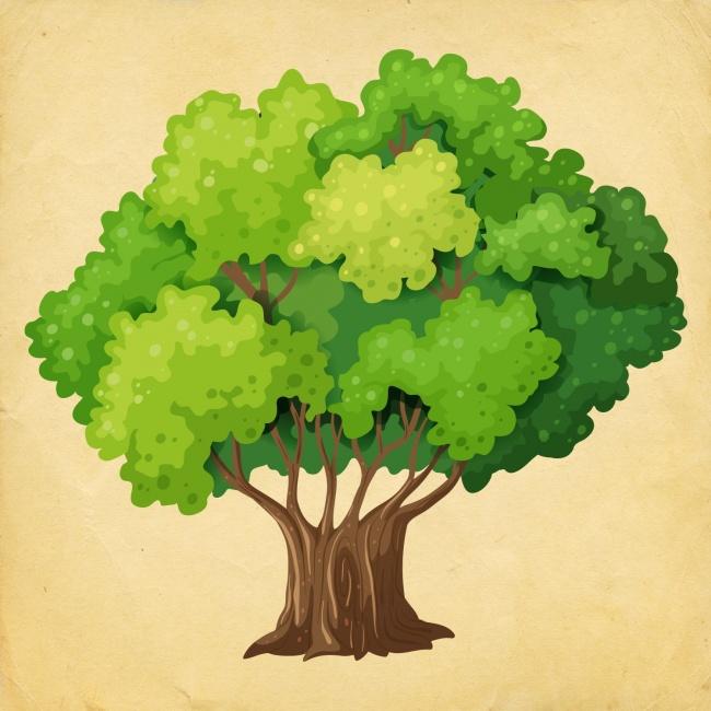 5-select-tree-and-find-what-where-dozhiveete-in-2018-ta-years-www.kafepauza.mk_