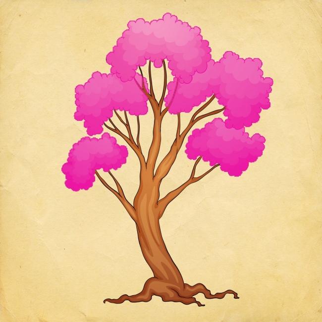 88-select-tree-and-find-what-where-dozhiveete-in-2018-ta-years-www.kafepauza.mk_