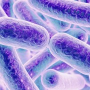 19 знаци дека во вашето тело живеат паразити и како да се ослободите од нив