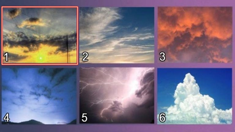 2-izberete-nebo-koe-najmnogu-vi-se-dopagja-i-otkrijte-go-vashiot-skrien-karakter-www,kafepauza.mk_