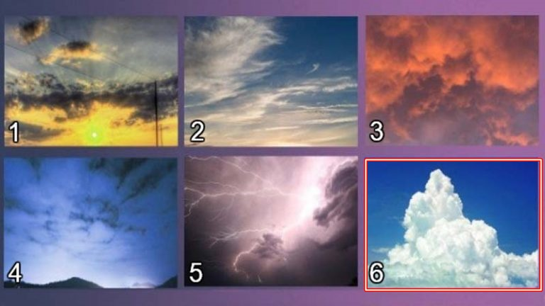 7-izberete-nebo-koe-najmnogu-vi-se-dopagja-i-otkrijte-go-vashiot-skrien-karakter-www,kafepauza.mk_