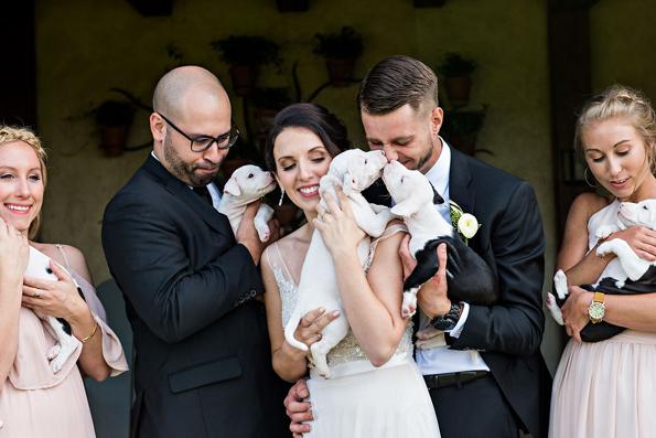 Неодоливи фотографии: Овој пар ги заменил свадбените букети со мали кутриња