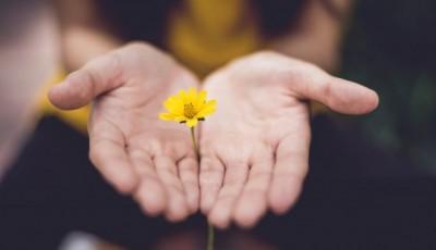 4 видови извинувања и сè што треба да знаете за нив