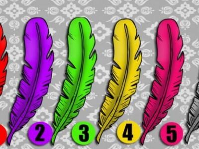 Одберете пердув и откријте која особина најдобро го опишува вашиот карактер